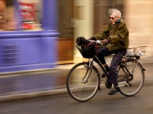 bicycle-rider-and-dog_21256_600x450