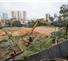 Metrô de SP derruba 145 árvores de parque para obras na zona leste