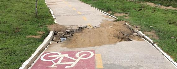 Pedalada técnica em Manaus vai avaliar malha cicloviária da cidade
