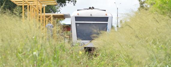 Estações do metrô de Teresina estão cheias de mato e lixo