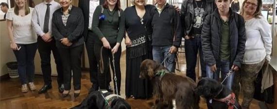 Motoristas serão orientados a permitir cães-guia em ônibus de Curitiba