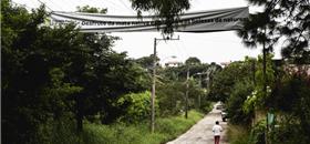 Estrada ecológica, e não asfalto, pedem moradores de Florianópolis