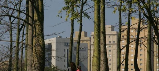 Área do canteiro de obras será cedida ao parque