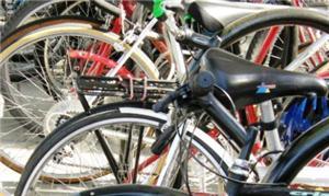 Bicicletas podem se tornar modo de interesse socia
