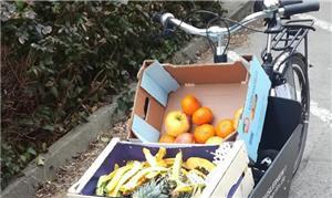Bikes de carga em Berlim