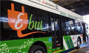 Cada ônibus tem capacidade para transportar 150 pa
