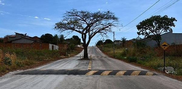 Cajazeira em Paraíso do Tocantins (TO)