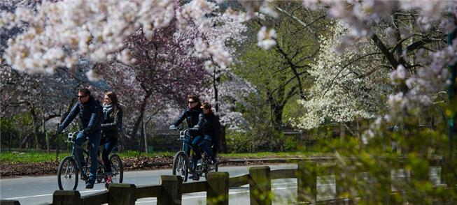 Ciclistas e pedestres no Central Park. Livre de ca