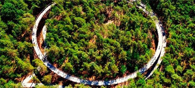 Ciclovia espiral sobre as árvores de Boosland