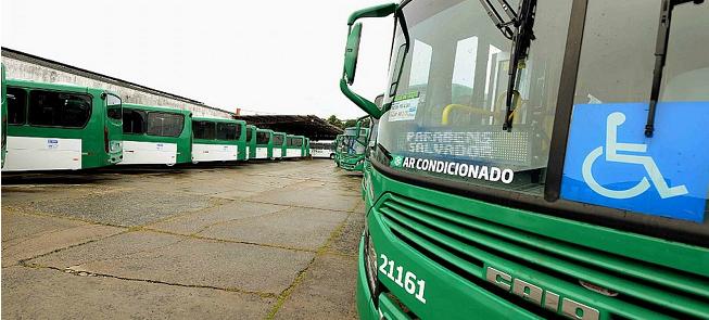 Novos ônibus foram apresentados em entrevista cole