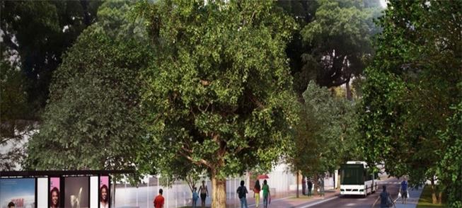 Perspectiva da nova Rua do Príncipe: mais 1,20 m d