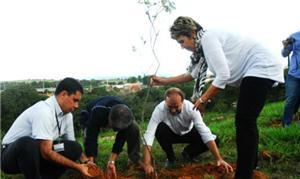 Plantio de muda inaugura o projeto